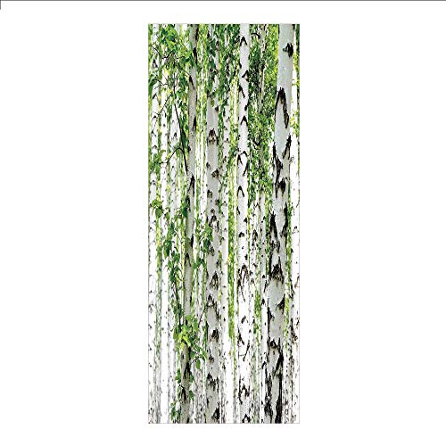 (3D Decorative Film Privacy Window Film No Glue,Woodland Decor,Birch Trees in The Forest Summertime Wildlife Nature Themed Decorating Picture,White Green,for Home&Office)