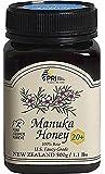 Manuka 20 + Bio Active, 1.1 Pound Jar