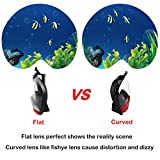 Full Face Snorkel Mask 2.0,2017 New Foldable Snorkeling Mask Full Face with Detachable GoPro Mount Pivot Arm and Earplug, 180° Large View Easy Breath Dry Top Set Anti-fog Anti-leak for Adults Youth