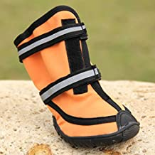 Waterproof Dog Shoes for Large Dogs Pet Shoes Large 4 Pcs (Orange, XXL)