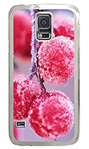 Samsung Galaxy S5 Winter Berries Frosted PC Custom Samsung Galaxy S5 Case Cover Transparent