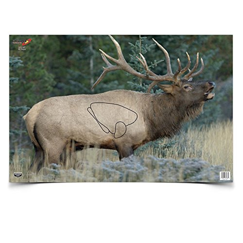 Eze-Scorer Elk Target Birchwood Casey 37485
