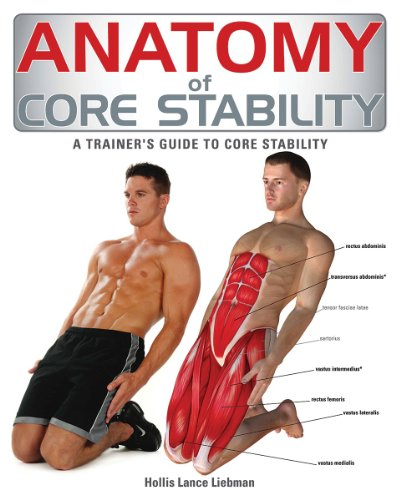 Anatomy of Core Stability: A Trainer's Guide to Core Stability