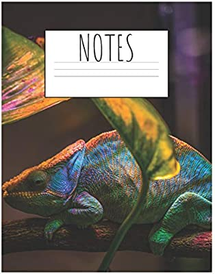 Notes Cute Chameleon Composition Notebook Journal For Animals Lovers To Writing 7 44x9 69 Inch Wide Ruled Lined Paper 120 Blank Pages Bright Green Blue White Pattern By Pets Sounding Amazon Ae,Sun Conure For Sale