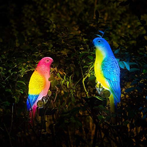 Garden Of Coloured Lights in US - 7