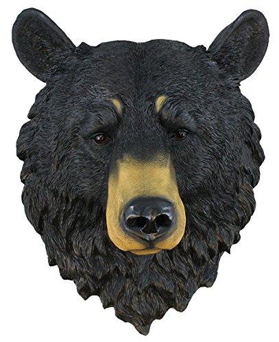 Bears Bear Head - Black Bear ~ Bust ~ Grandfather Mountain Large 17.5