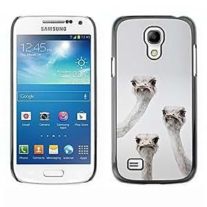 TopCaseStore / la caja del caucho duro de la cubierta de protección de la piel - Emu Ostrich Birds Grey Black White Funny - Samsung Galaxy S4 Mini i9190 MINI VERSION!