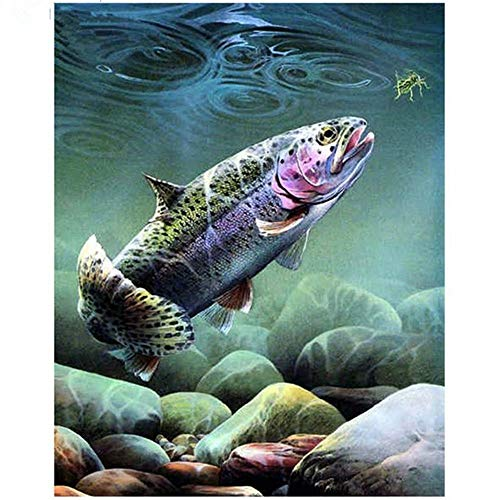 Paint by Number Kits - Fish 16x20 Inch Linen Canvas Paintworks - Digital Oil Painting Canvas Kits for Adults Children Kids Decorations Gifts (with Frame)