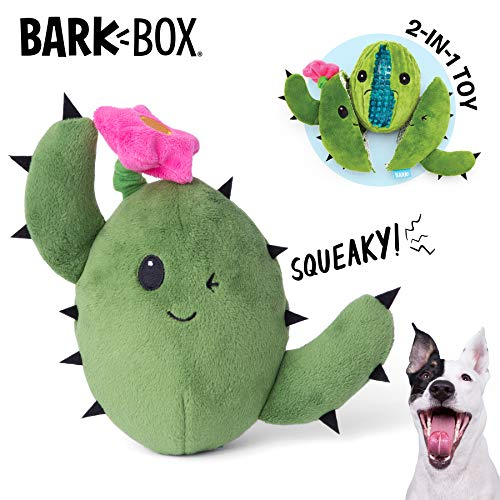 BarkBox Dog Squeak Toys