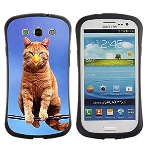 All-Round híbrido de goma duro caso cubierta protectora Accesorio Generación-I BY RAYDREAMMM - Samsung Galaxy S3 I9300 - Cat Bird Sitting Branch Yellow Ginge Beak