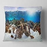 Designart CU6443-18-18 Indonesia Underwater Panorama Throw Pillow, 18'' x 18''