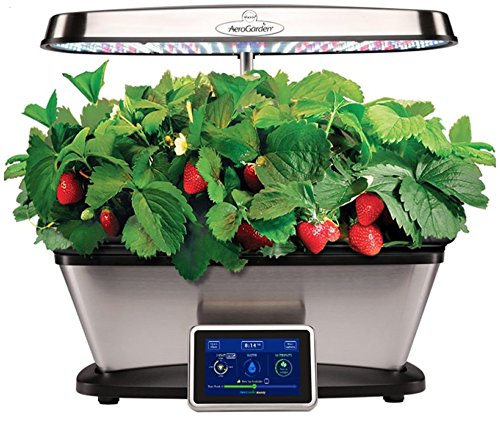 Bounty Elite LED with Strawberry Grow Bowl and Gourmet Herb Seed Kit by Aerogarden by AeroGrow
