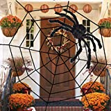 Lansian Halloween Decorations Spiderweb 10.5ft Spider Web with 3ft Realistic Black Fake Spider Spooky for Kids Outdoor Yard Haunted House Party Decoration