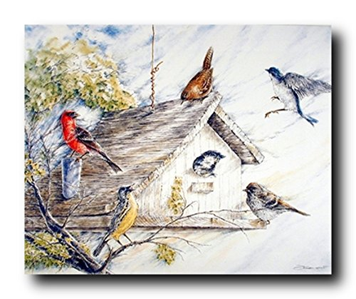 Wild Animal Wall Decor Birds at Birdhouse Nature Fine Art Wall Decor Print Poster (16x20)