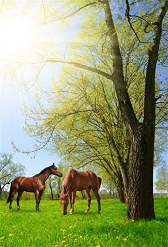 AOFOTO 5x7ft Horses In Meadow Background Chestnut Pony Spring Landscape Photography Backdrop Ranch Summer Scenery Turkey Farm Boy Girl Artistic Portrait Photo Studio Props Derby Party Vinyl Wallpaper ()