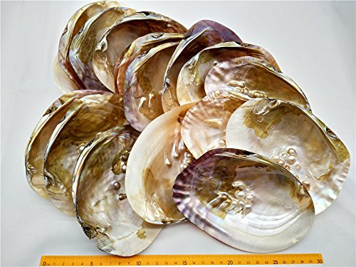 Oyster Shell Crafts - 8