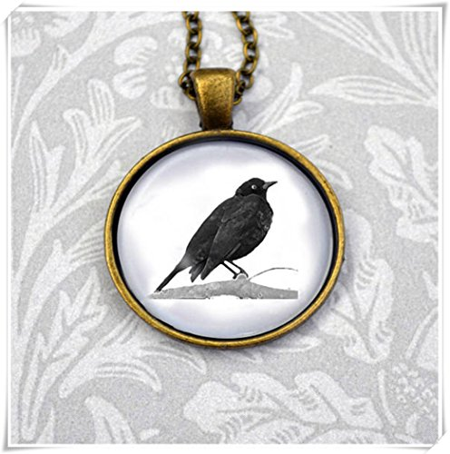 Magical magnet English blackbird sat on a branch watercolour style illustration in round antique bronze pendant ()