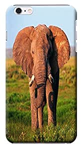 Fantastic Faye Cell Phone Cases For iPhone 6 The Cute Design With Elephant No.6