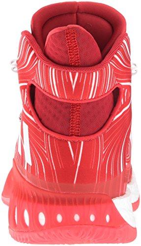 adidas Performance Herren Crazy Explosive Basketballschuh Scharlachrot / Weiß / Universität Rot