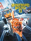 Homeward Bound II: Lost In San Francisco poster thumbnail