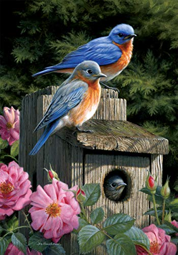Custom Decor Bluebird House - Garden Size, Decorative Double Sided, Licensed and Copyrighted Flag - Printed in The USA Inc. - 12 Inch X 18 Inch Approx. ()