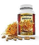 Organic Cordyceps Mushroom Capsules by Real Mushrooms – 120 Capsules of Extract Powder