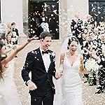 5000-Silk-Rose-Artificial-Petals-Supplies-Wedding-Decorations-Ivory