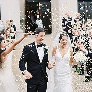 Shenglong 5000 Silk Rose Artificial Petals Supplies Wedding Decorations - Ivory 4