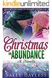 Christmas in Abundance: A Novella, Contemporary Christian Romance (The Abundance Series)