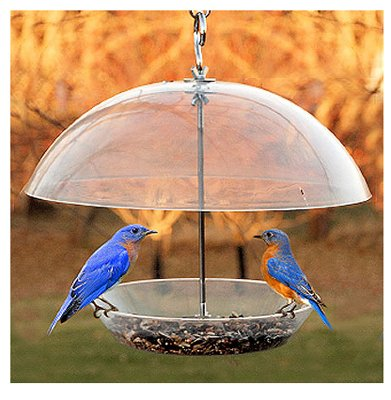 Dome Top Seed Feeder by Woodlink