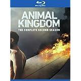Animal Kingdom: The Complete Second Season [Blu-ray]