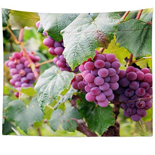 Westlake Art Wall Hanging Tapestry - Grape Grapevine - Photography Home Decor Living Room - (Jackson Estate Wines)