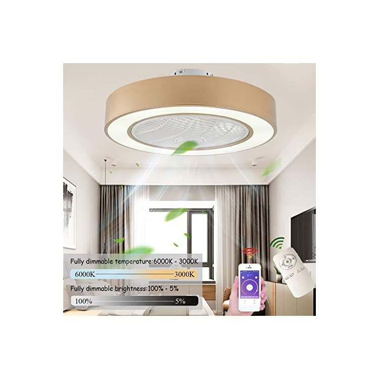 Ceiling Fan with Lighting LED Fan Ceiling Light, Dimmable with Remote Control, Adjustable Wind Speed, 72W Modern…