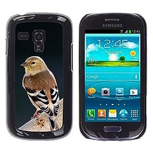 YOYOYO ( NO PARA S3 i9300 ) Smartphone Protección Defender Duro Negro Funda Imagen Diseño Carcasa Tapa Case Skin Cover Para Samsung Galaxy S3 MINI I8190 I8190N - ornitología rama de la primavera de aves