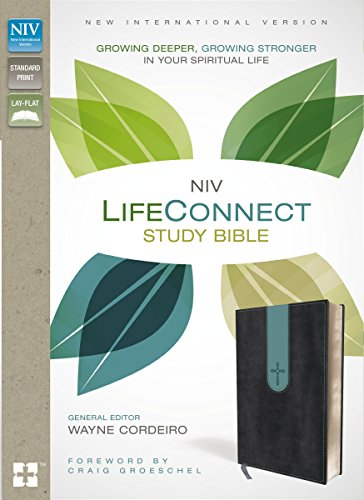 NIV, LifeConnect Study Bible, Leathersoft, Gray/Blue, Indexed, Red Letter Edition: Growing Deeper, Growing Stronger in Your Spiritual Life