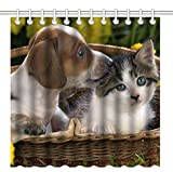 Cute Shower Curtains Wknoon 72 x 72 Inch Cute Puppy and Kitten Shower Curtain, Waterproof Polyester Fabric Decorative Bath Curtains (Dog and Cat)