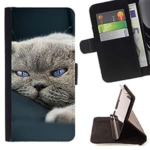 Momo Phone Case / Flip Funda de Cuero Case Cover - Gato so?oliento lindo Casa Británico de Pelo Corto - Samsung Galaxy A5 ( A5000 ) 2014 Version