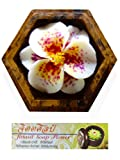 Jittasil Hand-Carved Soap Flower, White Lily Gift-Set in Wood Case, 4""