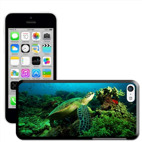 Fancy A Snuggle Sea Turtle Green Coque arrière rigide à clipser pour Apple iPhone 5C
