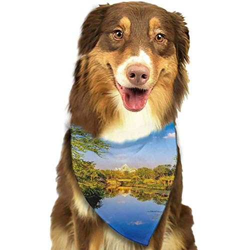 Custom Made Puppy Dog Pet Bandanas,Stylish Accessories for Everyday Adventures-Disney World Galaxy Note Samsung Pattern Printing Colorful]()
