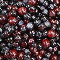 25 Seeds Mountain Huckleberry Bush Seeds (Vaccinium membranaceum)