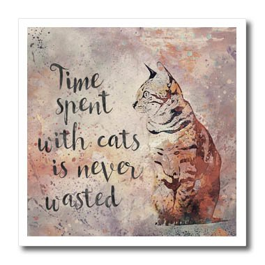 3dRose ht_264743_3 Illustration Watercolor Time Spend with Cats is Never Wasted Iron On Heat Transfer 10""