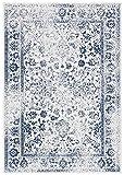 SAFAVIEH Adirondack Collection ADR109M Oriental
