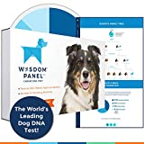 Image of Wisdom Panel 3.0 Canine DNA Test - Dog DNA Test Kit for Breed and Ancestry Information