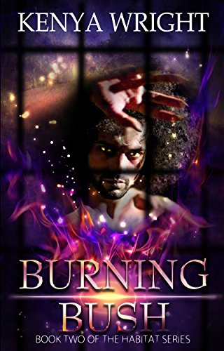 Search : The Burning Bush (Interracial Paranormal Romance) (Santeria Habitat Series Book 2)