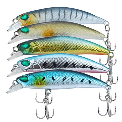 Discover Fish Fishing Lures Trout Bass Minnow Mens Topwater Pro Lifelike Swimbaits Musky Walleye Crappie Hard Plastic Baits Set with Treble Hooks for Freshwater Saltwater Lake 2.5inch 5Pcs/Lot