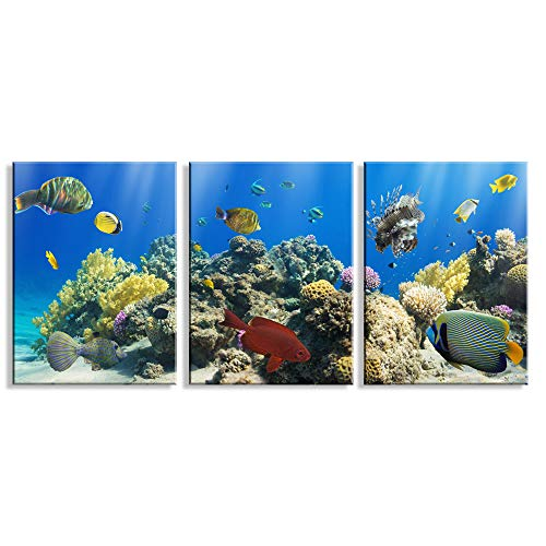 3 Piece Ocean Canvas Wall Art Mural, Coral and Tropical Fish Colourful Underwater World, Modern Home Wall Decor Stretched and Framed Artwork