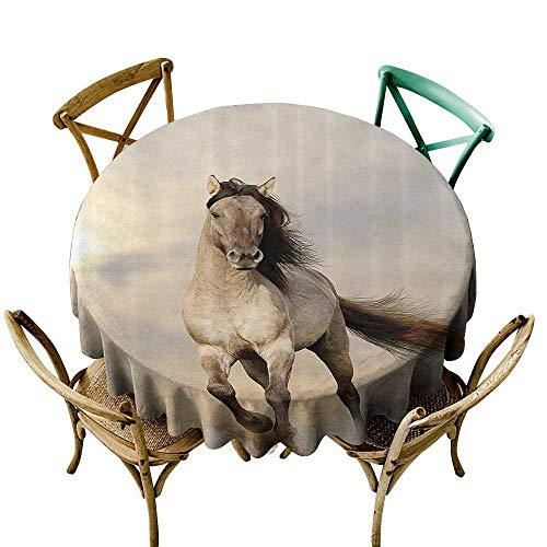 Jbgzzm Oil-Proof and Leak-Proof Tablecloth Animal Decor Collection Wild Young Stallion Horse Running at Sunset Male Power Nake Muscular Physique Nobility Photo Party D55 Biege