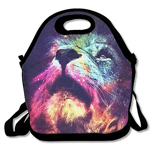 Nopofjiobr Lion Paint Love Insulated Portable Reusable Picnic Lunch Tote Bags For Women, Teens, Girls, Kids, Adults, Office, School Or Gym