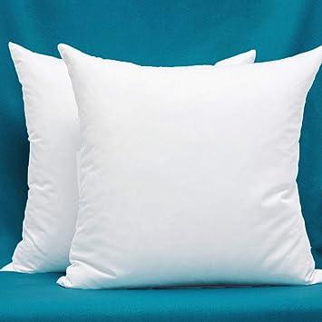 Amazon.com: Juego de 2 cojines de tela de algodón, rellenos ...